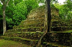 Ruines de Muyil (Kaméléon Photographie) Tags: voyage maya tulum siankaan mexique ruines archéologie muyil