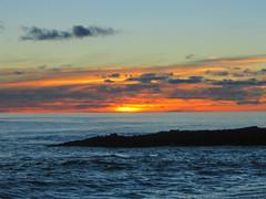 Tasman Sea Sunset (Kerflipplesnap84) Tags: ocean sunset sea newzealand shore nz northisland tasmansea