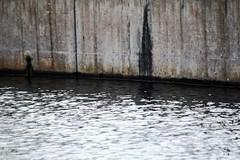 Hollywood Studios Abstract (AndyM.) Tags: reflection water canon concrete eos orlando florida cement waltdisneyworld 60d 55250mm