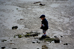 j'y vais j'y vais pas!!!Brittany_4997 (ichauvel) Tags: boy france beach water childhood walking outside coast la spring sand nikon brittany rocks eau europe day child little tide marin low sable bretagne western lovely enfant plage printemps channel manche rochers garon matin mignon basse enfance marcher mare littoral bret ctesdarmor exterieur baiedestbrieuc hsitation grve
