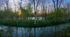 Marais Poitevin (daniel_58) Tags: lake reflection nature sunrise landscape lac olympus reflet hdr omd em10