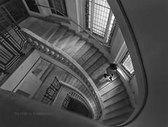 De escaleras... (Kambrosis) Tags: madrid crculodebellasartes
