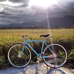 Countryside ride from Hualien to Taitung... (Stubborn Cycleworks) Tags: columbus track handmade spirit fixed handcrafted fixie custom pista fixgear framebuilding custommade filleting uploaded:by=flickstagram stubborncycleworks instagram:photo=8477697096178788772926796 instagram:venuename=e6b1a0e4b88ae5a4a7e59da1e6b1a0 instagram:venue=332519841 ccountrysideride