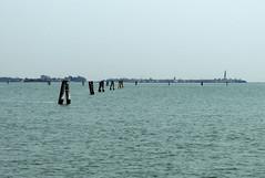 Venezia laguna - 2 (anto_gal) Tags: mare laguna acqua venezia burano veneto 2016