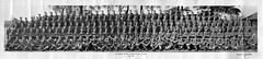 Bedfordshire Home Guard (stephen.lewins (1,000 000 UP !)) Tags: bedfordshire ww2 dadsarmy civildefence homeguard thehomeguard bedfordsirehomeguard