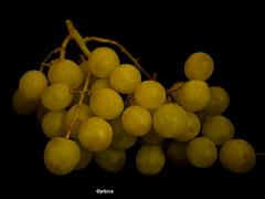 Green Grapes (jefpics) Tags: macro green fruit grapes jefpics
