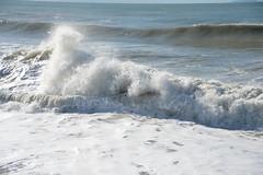 Rip Curl Marina di Pisa (pineider) Tags: marina reflex nikon europa italia boobs titts full pisa frame topless di fullframe