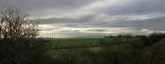 January greys (Lottie07) Tags: canon eos january warwickshire 2016