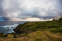 2016.01.06-Maui-010 (c_tom_dobbins) Tags: hawaii maui nakalele