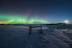 Moonrise and Aurora (Sandra Herber) Tags: winter snow canada night stars alberta northernlights auroraborealis