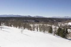 Biltmore Estate snow January 2016 (jackie.moonlight) Tags: house mountain snow nc estate asheville january 24 biltmore wnc 2016