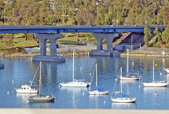 Coronado 2-7-16 (1) (Photo Nut 2011) Tags: california sandiego coronado coronadobridge