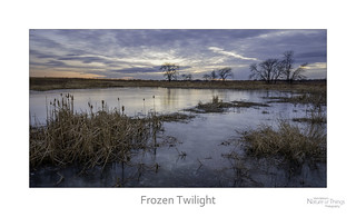 Frozen Twilight