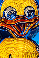 crazy duckling (Sam Scholes) Tags: old trip las vegas vacation graveyard sign museum us duck neon unitedstates lasvegas anniversary nevada duckling neonsign oldsign signgraveyard neonsignmuseum theneonmuseum