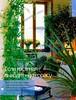 Комнатные и садовые растения от А до Я 46 15