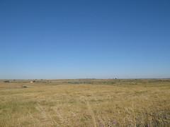 Weite Wiesenlandschaft und strahlend blauer Himmel (pilgerbilder) Tags: pilgern pilgerfahrt pilgertagebuch vadellaplata cceresalcntara