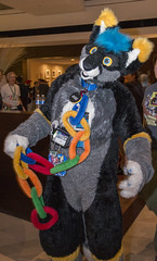 DSC_2035 (Acrufox) Tags: midwest furfest 2014 furry convention december hyatt regency ohare rosemont chicago illinois acrufox fursuit fursuiting mff2014