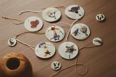 Www.oonajulia.tictail.com (oonajuliar) Tags: flowers vintage spring handmade driedflowers tictail