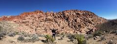 Red rock canyon #lasvegas #desert #redrock #canyon #nevada (kiapink) Tags: desert lasvegas nevada canyon redrock