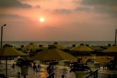 Sunsetting over Kingsbury Hotel pool