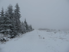 IMG_8590 (Bike and hiker) Tags: winter mist hiver sneeuw neige venn hoge hautes fagnes venen hohes botrange neur bayehon low