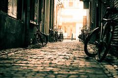 alley with bicycles (bjdewagenaar) Tags: street old city light urban orange holland green dutch bicycle contrast 50mm prime raw angle minolta pavement decay f14 sony low perspective split alpha lightroom toning gorinchem a58 gorcum