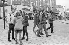 Island rendezvous (Nodding Pig) Tags: uk greatbritain england film monochrome 35mm bristol island triangle pedestrian scan hp5 ilford nikonfm2 westend queensroad 2015 nikkor50mm 20151025026101
