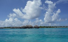 Le Meridien Resort - Bora Bora (Craigs Travels) Tags: borabora overthewaterbungalow