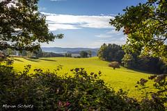 Balver Wald (*strider*) Tags: oktober herbst wald kyrill garbeck sauerlnder balve fernsicht aussichtsplattform waldroute balver