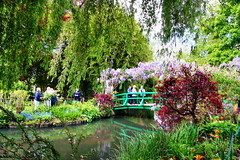 Bridge over a Pond of Water Lilies (Albert Jafar) Tags: bridge people plant france flower reflection pond ngc willow waterlilies normandy giverny claudemonet ngs photographerswharf bridgeoverapondofwaterlillies