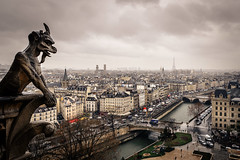 Paris from Notre Dame (Thomas Bechtle Fotografie) Tags: sky lake paris seine skyline clouds river nikon frankreich cityscape notre dame eiffelturm d800