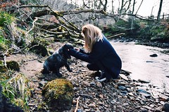 Dreamy (Emily Wrightson) Tags: dog nature puppy easter walking spring nikon converse spaniel cockerspaniel bestfriend nikon3200