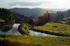 1 (Yorozuna / ) Tags: mountain reflection water landscape pond scenery reservoir crop niigata agriculture ricefield  ricefields        waterreservoir  ojiya           terracedricefields    pentaxsupertakumar28mmf35  agriculturalwater