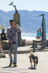 Caminata por el malecn (Jos Carlos Martnez) Tags: dog walking perro caminata youngman joven malecn