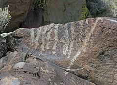 Petroglyphs / Blackrock Well Site (Ron Wolf) Tags: california archaeology nationalpark nativeamerican salinevalley petroglyph anthropology shoshone rockart parallellines deathvalleynationalpark inyocounty numic
