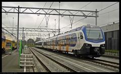 NSR 2202 & 2502 | 25-04-2016 | Nedtrain Maastricht (Michel Ritmeester) Tags: maastricht blauw flirt nederland polen geel wit trein 2500 2200 bruin nedtrain nsr 2202 stadler 2502