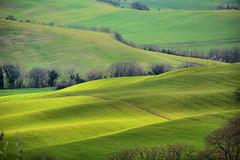 colpi di sole (Sante sea) Tags: italy italia val tuscany pienza toscana landsacape paesaggio dorcia