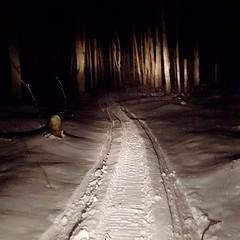 2016-04-01_01-42-56 (the_maria_medic) Tags: snowlandscape snowscenes snowmobiling snowsports snowmobiletrails antrimcountymi nighttimesnowmobiling