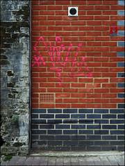 Notch (Alex Ellison) Tags: urban graffiti boobs tag graff irp notch eastlondon noch htb