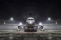 Mirrored stranger (Oleg Botov) Tags: sky fog night plane airport aircraft aviation terminal apron airbus su spotting afl airliners a320 avia aeroflot   planespotting   sheremetyevo  avgeek   planeporn crewlife slavniyoleg