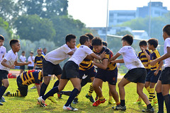 _DSC6065 (acsprugby) Tags: rugby national acs primary endeavor 2016