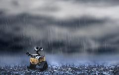 before the rainbow.. (jdewinnaar) Tags: macro cute wet field rain canon dark toy photography rainbow bokeh outdoor no sigma 5d depth f28 mk wideopen walle 2870mm revoltech