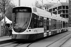 Tramway (Didier Mouchet) Tags: blackandwhite bus monochrome train nikon geneva noiretblanc tram rail transports streetcar  genve tramway ville genf cite   citadin strasenbahn  d5300  didiermouchet