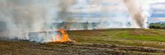 Stubble Burn-Off (grantg59@xtra.co.nz) Tags: autumn winter fire farm smoke straw flame burn stubble burnoff