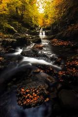 La Rioja (sgsierra) Tags: color puente la agua autum otoño ra rioja cascada cebollera