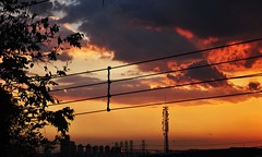 por-do-sol da minha janela... 18:24 p.m (Ruby Ferreira ) Tags: sunset tree buildings branches silhouettes wires antenna prdios silhuetas atwindow