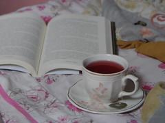 82/366 Accepts a cup of tea? (JessicaBelotto) Tags: cup frutas nova book foto tea interior twinings vermelho quarto livro fotografia cama xcara ch leitura lendo vermelhas fotografico 366daysofhoney 366diasnoano