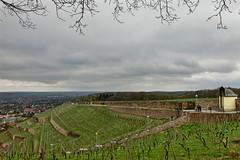 Spitzhaustreppe - Radebeul, Sachsen (Andr-DD) Tags: cloud stairs germany deutschland vineyard wine saxony himmel wolken treppe sachsen wein weinberg radebeul spitzhaus spitzhaustreppe