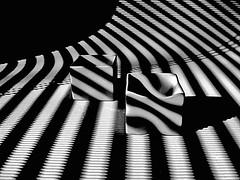 pinched (losy) Tags: stripes porcelaine shadowplay porzellan streifen kitchenproduction losyphotography