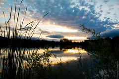 (kayters) Tags: california longexposure sunset sky lake nature colors northerncalifornia clouds canon reflections landscape spring naturallight bayarea april kaytedolmatchphotography kathleendolmatch